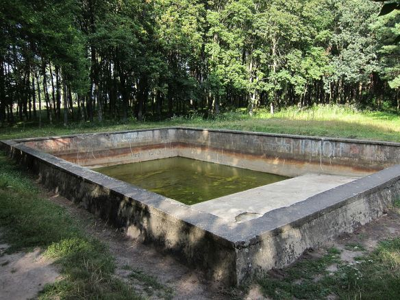 The swimming pool - largest remaining structure at the site of the Werwolf (Credit: UA-Lora)