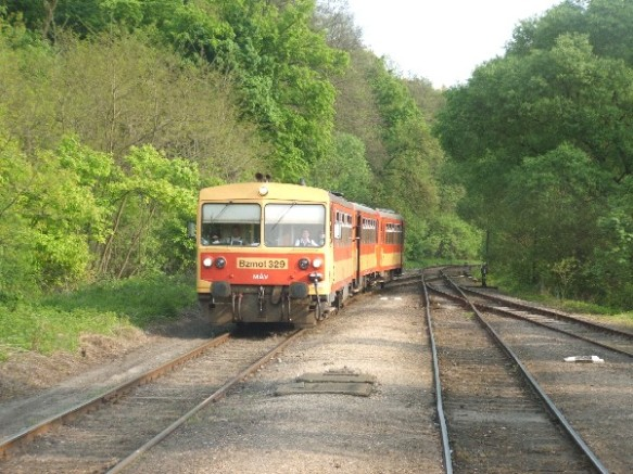The Kiraly Forest Railway