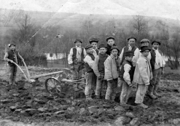 Hungarian peasant children plowing a field in 1920