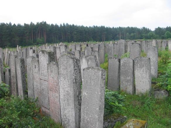 Jewish Cemetery in Brody, Ukraine (Eastern Galicia) (Credit: Roman Zacharij)