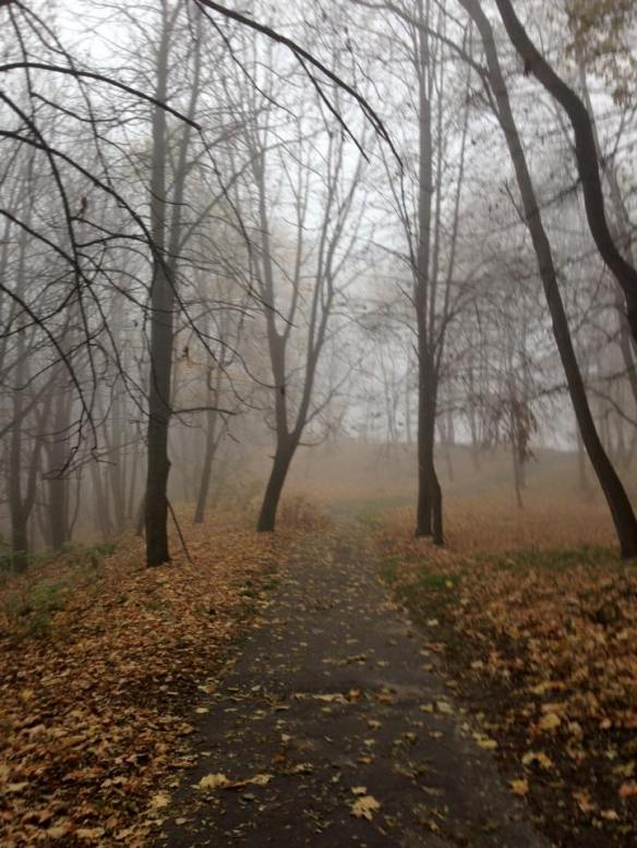High Castle Park on a misty November morning