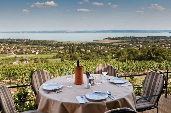 The essence of Csopak - wine and Lake Balaton