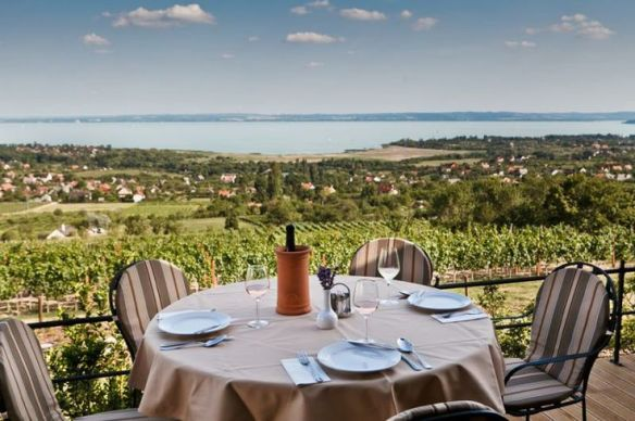 The essence of Csopak - wine and Lake Balaton