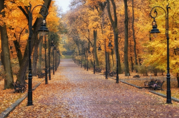 Ivan Franko Park during late autumn