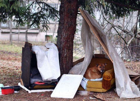 The Homeless of Sofia