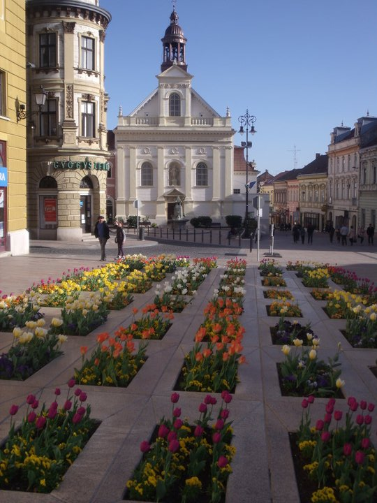 Flowers in Szechenyi ter with Saint Sebastian's Church in the backgrounnd