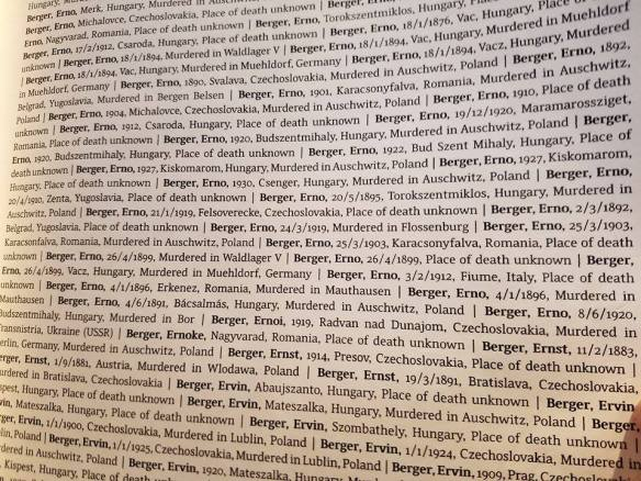 There are 31 entries for Erno Berger in The Book Of Names