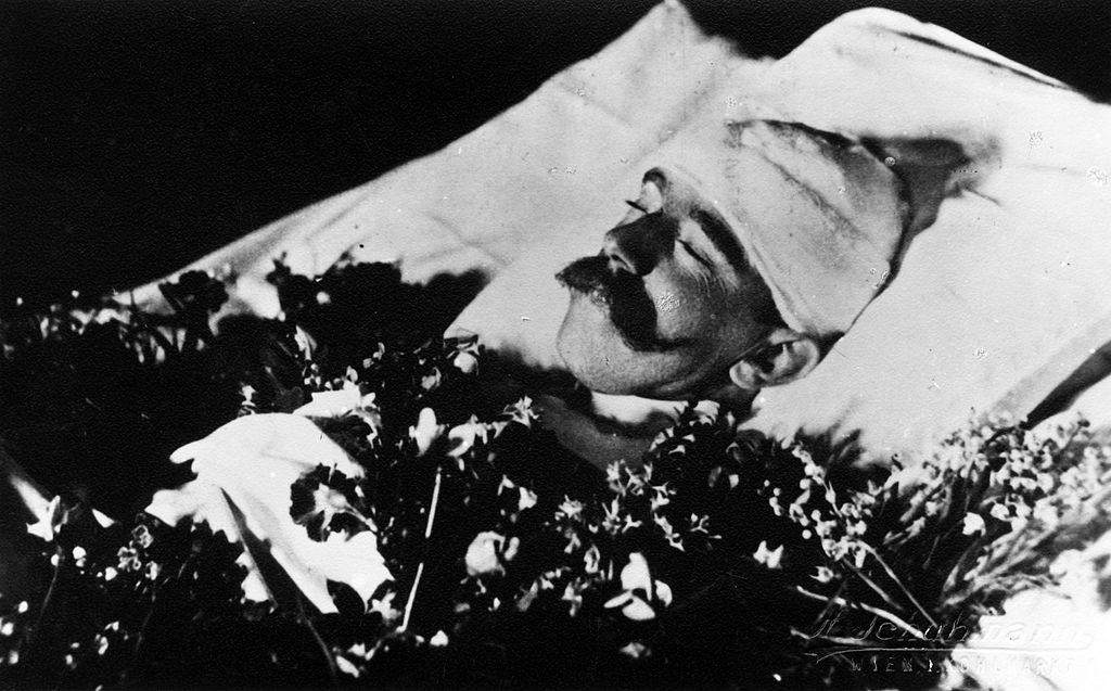 Tragic Destiny - Crown Prince after the Mayerling Incident