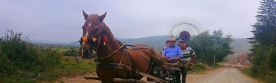 Spirits of a Former Age - One horsepower in Szekelyland