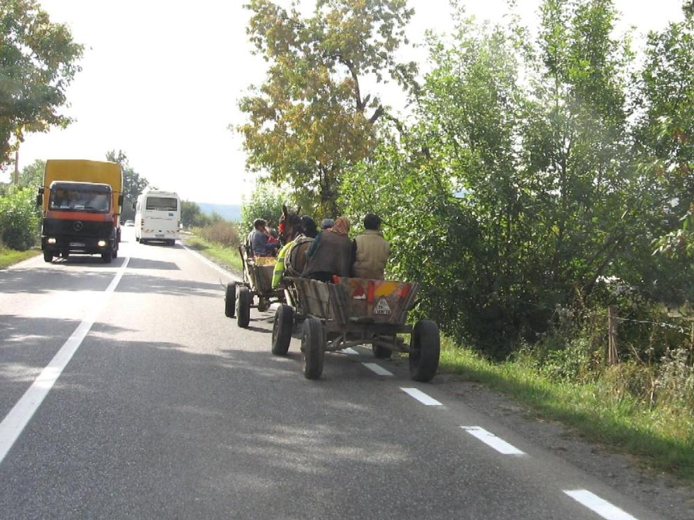 Passing fancy - Distracted driving decisions abound in Transylvania