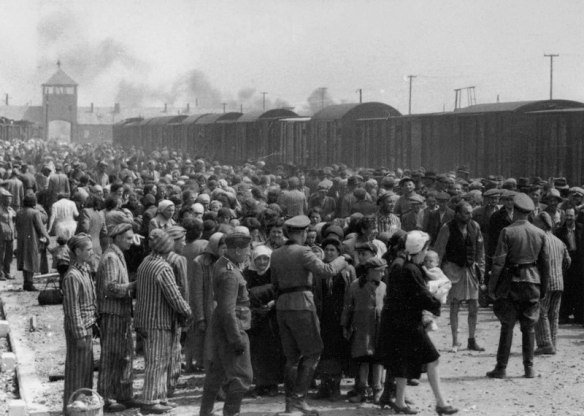 A Nightmare During Daylight - Hungarian Jews on the selection ramp at Auschwitz-Birkenau