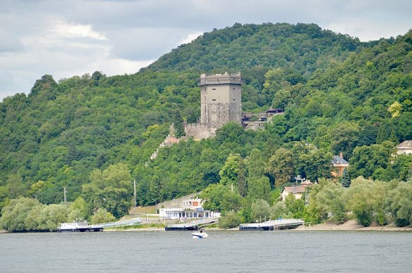 History Rising - Solomon's Tower from the Danube