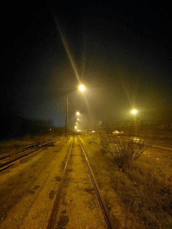 A Walk on the Wild Side - Abandoned tram line in Belgrade